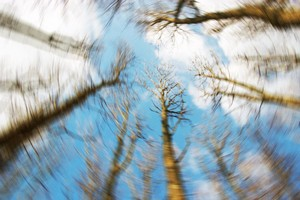 How Is Dizziness Linked to Hearing?